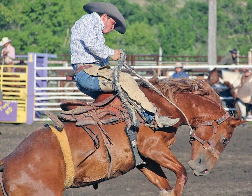 Summer events are back in full force | The Journal & Tioga ...